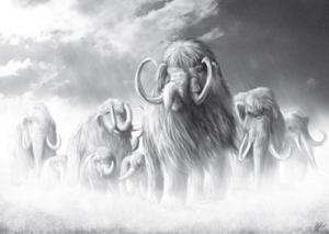 Es gibt wieder Fleisch! Wenn Bornländer auf Mammuts treffen - von Janina Robben.