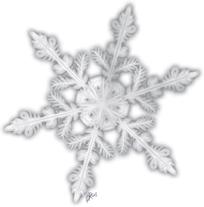 Wenn die Erfahrung fast vom Himmell regnet  Schneeflocke von Janina Robben.