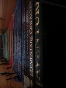 DSA-Bücher_im_Regal