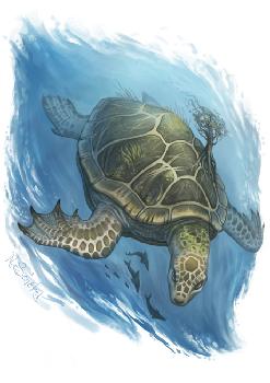 Gott der XoArtal_Drachenschildkröte
